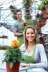 Florists couple working at flower shop.