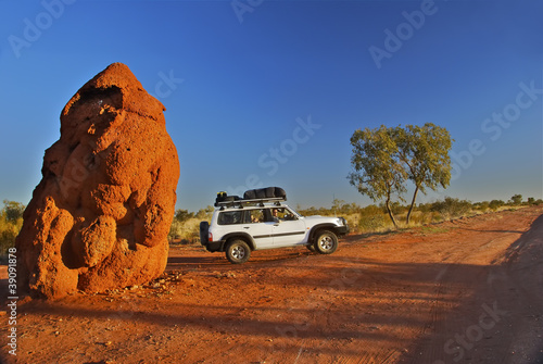 Austrlaian Outback, large anthill in NT (Plenty Hwy)