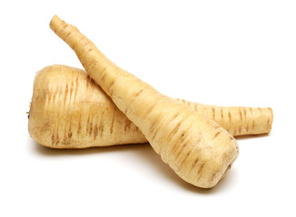two fresh parsnip roots on a white background