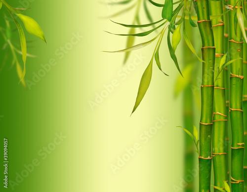 Fototapeten,abstrakt,asien,hintergrund,bambus