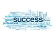 """SUCCESS"" Tag Cloud (achievement career performance goal target)"