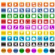 ボタン81セット(カラー)