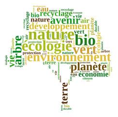 Ecologie arbre