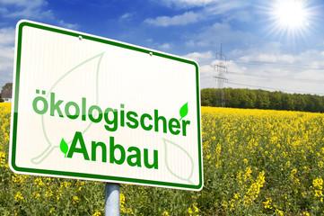Schild mit biologischem Anbau und Rapsfeld