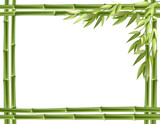 Bamboo frame. Vector background