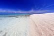 澄んだサンゴ礁の海と白い砂浜