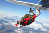 Fototapety Skydiver jumps from an airplane