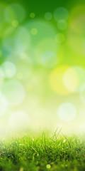 green sensation