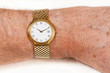 Gold watch with white face on hairy wrist
