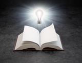 A light bulb over an open book