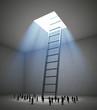 Tiny people ladder room