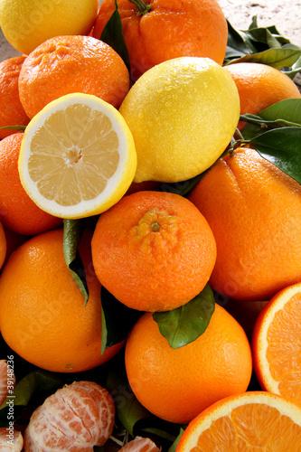 agrumi mediterranei con limone arancia mandarino