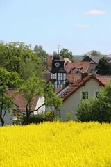 Dorf mit Rapsfeld