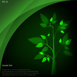 Eco concept: green tree with bright leaves under dark background