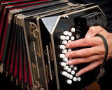 Fototapety Playing traditional bandoneon.