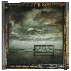 old bench photo print