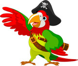 Fototapety Pirate  Parrot
