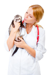 Young veterinarian examines a patient ferret