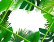 Tropical Background with Bamboo Frame