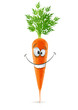 smiling carrot with top carrot with top vector illustration