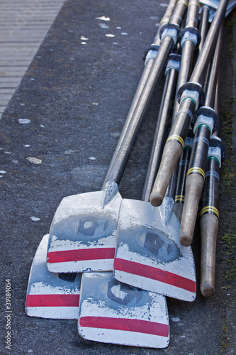 The oars of a rowing crew laid out after a race