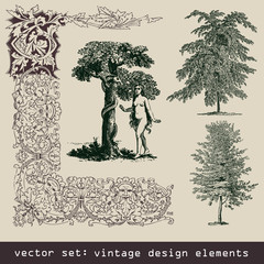 set of design elements - tree, eva, frame, border