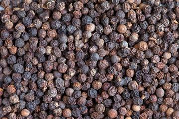 Black pepper  (Piper nigrum)