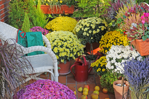 balkon mit herbstblumen von udo kroener lizenzfreies foto 39217067 auf. Black Bedroom Furniture Sets. Home Design Ideas