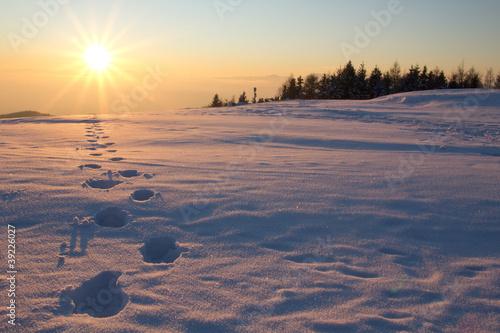 Leinwandbilder,schnee,winter,sonnenuntergang,sonne