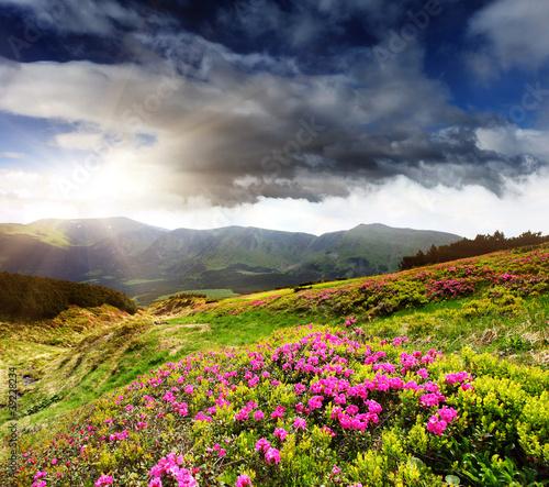 krajobraz-gorski-wiosna