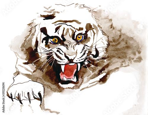tygrys-seria-c