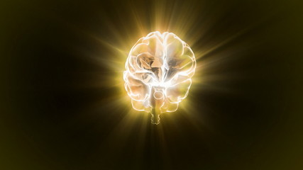 gold brain flare