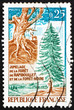 Postage stamp France 1968 Gnarled Trunk and Fir Tree