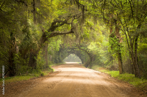 Leinwanddruck Bild Charleston SC Dirt Road Forest Spanish Moss South Edisto