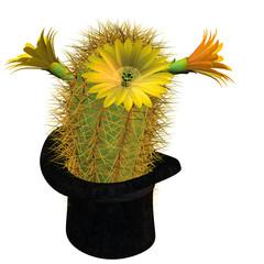 Kaktusblüte im Zylinder
