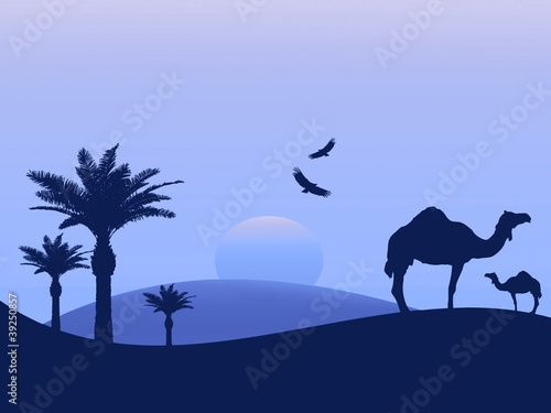 Camels in the desert - blue background