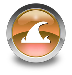 "Orange Glossy Pictogram ""Tsunami"""