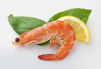 hot-water shrimp