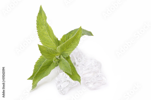 mint leaves and ice cubes