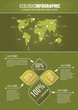Green ecologic infographic