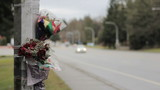 Cars Pass By Roadside Accident Memorial Scene