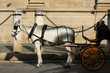 horse drawn carriage in Seville