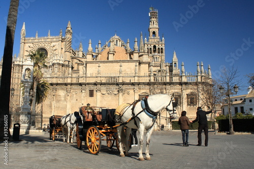 horse carriage in front of Seville Cathedral