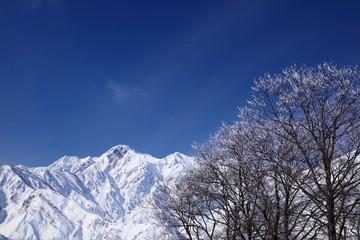 Mt. Goryudake, snow covered mountain in nagano japan