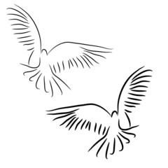 Set of white vector doves.