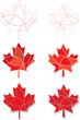 Red maple leaf set