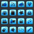 button Blue Social Media