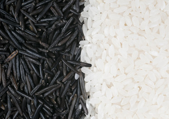 White and wild rice