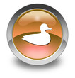"Orange Glossy Pictogram ""Duck"""