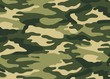 Иллюстрация: Texture camouflage background.